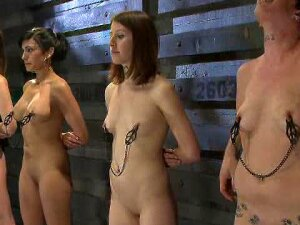 Lots Of Babes Tied Up And Having Their Tits Tortured Porn