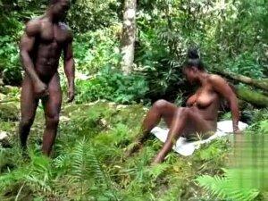 African Girl Fucking Garden Porn