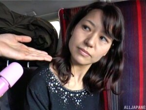 Brunette Japanese Mature MILF Teased With Toys In A Car Porn